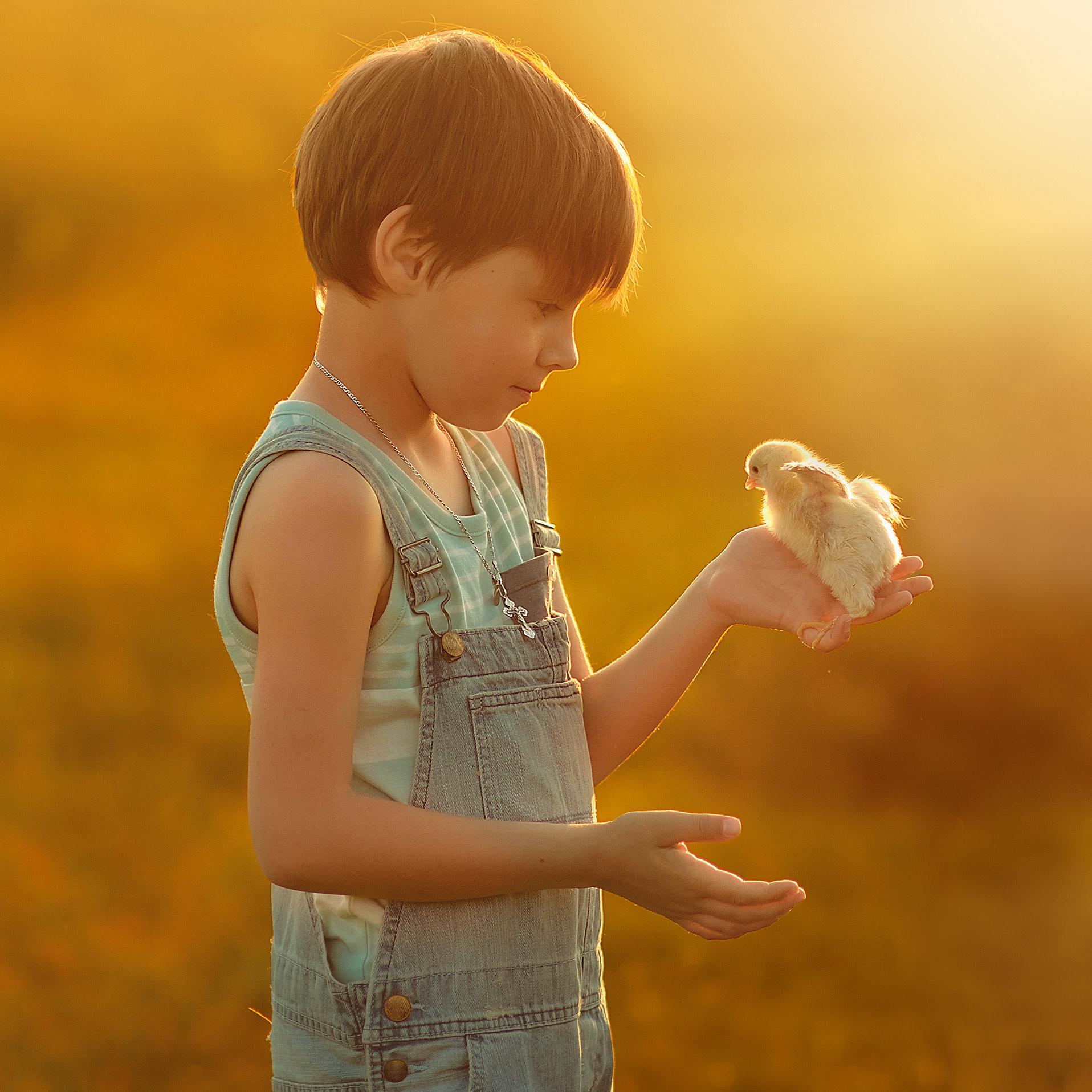 Kieselgur Milben Spray – Mittel gegen Vogelmilben für den Hühnerstall 3x 400 ml