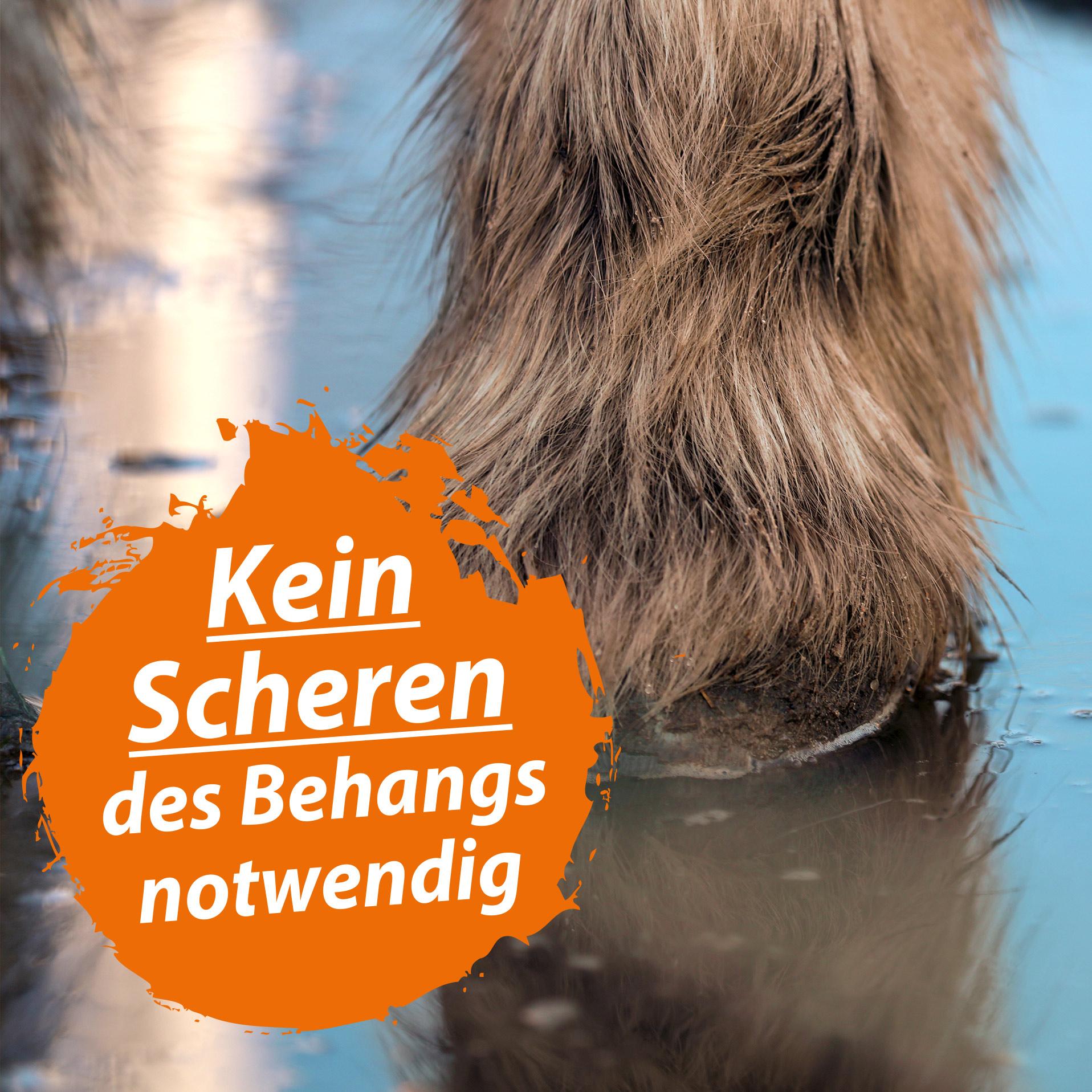 Mauke Spray für Pferde 500 ml - Mauke Mittel gegen Strahlfäule & Fesselekzem