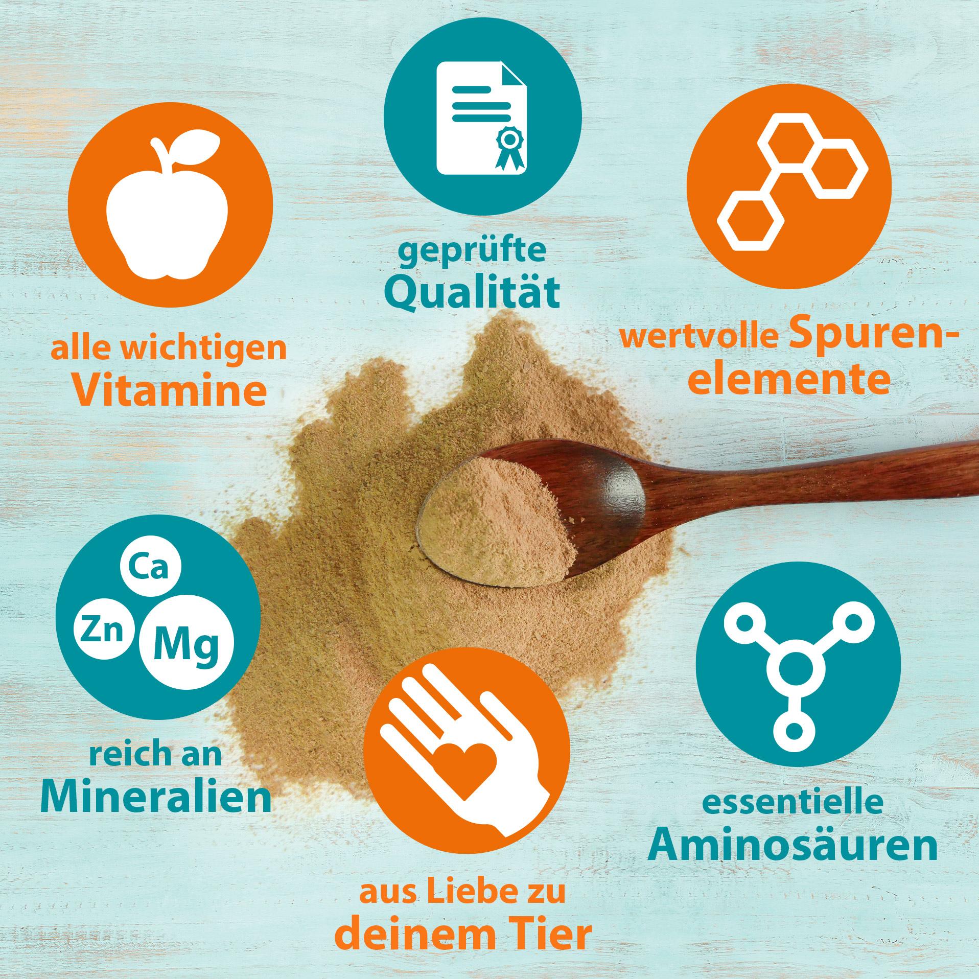 Bierhefe Pulver - Futterergänzung für glänzendes Fell & kräftige Haut 3 Kg
