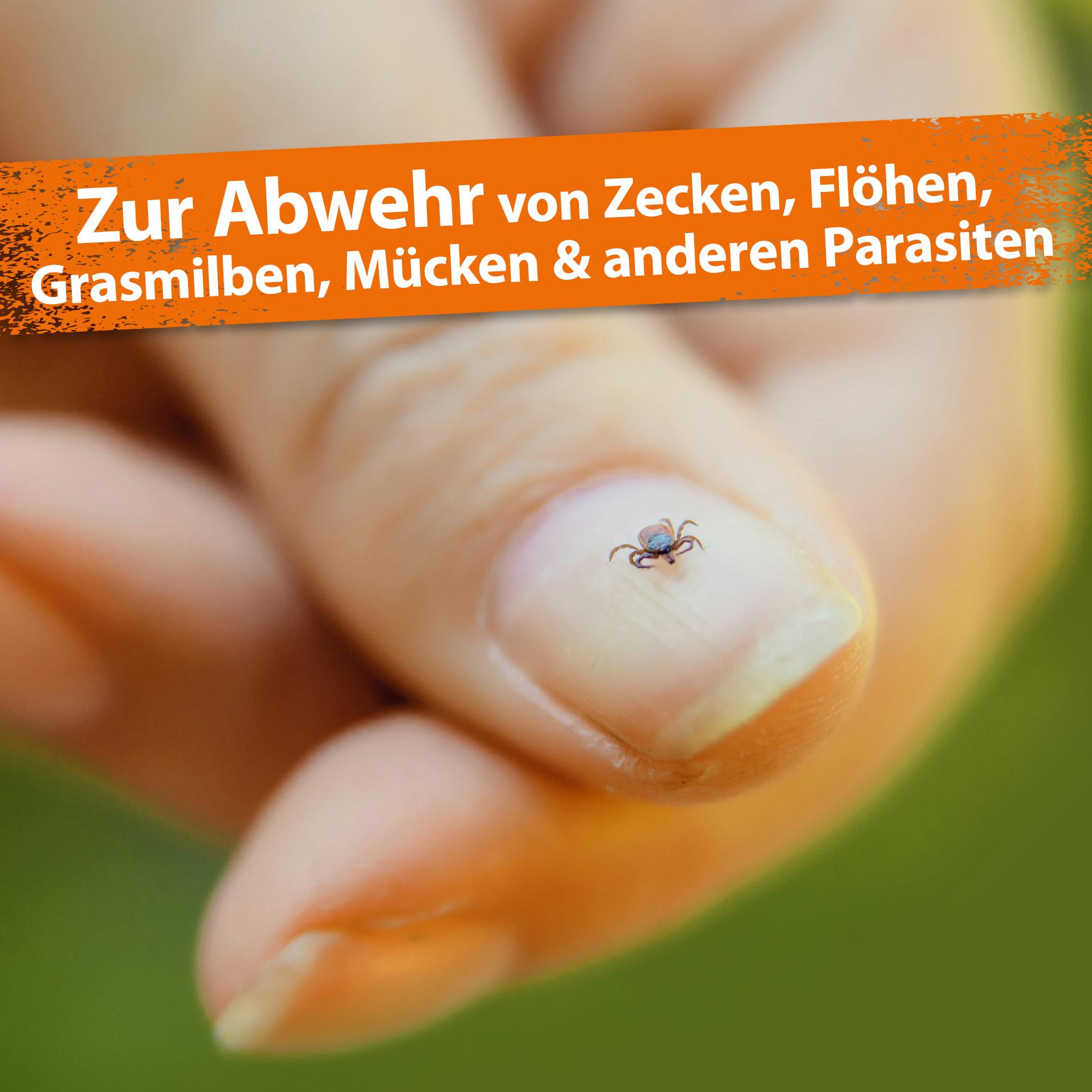 Zeckenfrei - Zeckenspray - Geraniol & Nelkenblätteröl zum Insektenschutz - 500 ml