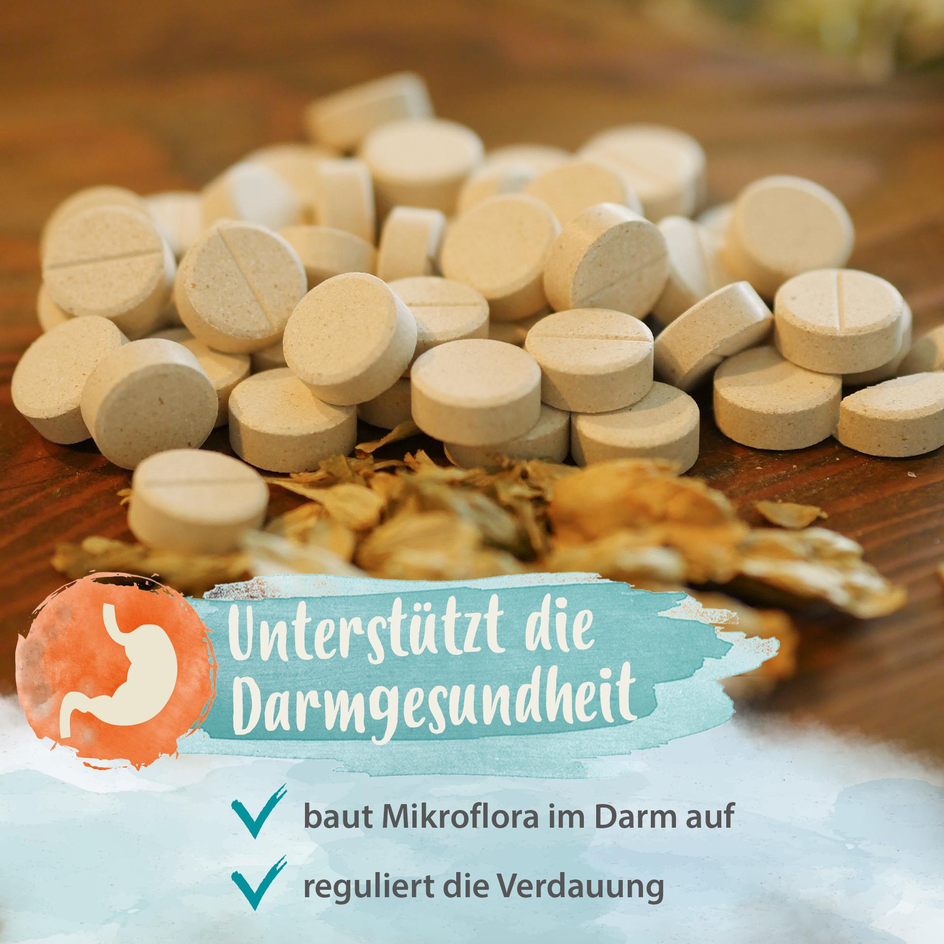 Darmbiotic - gesunde Darmbakterien - Probiotika zur Darmsanierung - 120 Stk.
