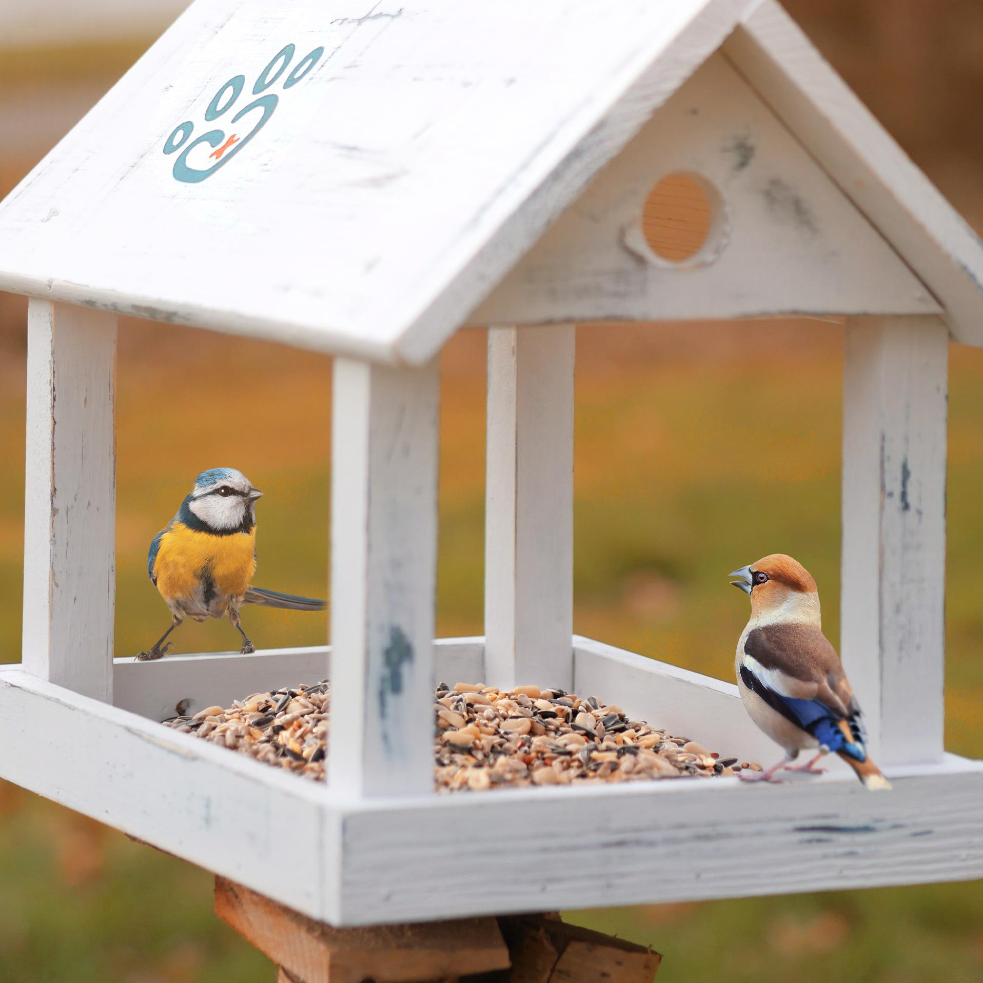 Vogelstreufutter ohne Weizen für Wildvögel - Ganzjahres Vogelfutter - 1,5 Kg