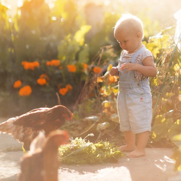 Reha-Elixier – zur Fütterung nach Anti Milben & Wurmkur Behandlung - 500ml