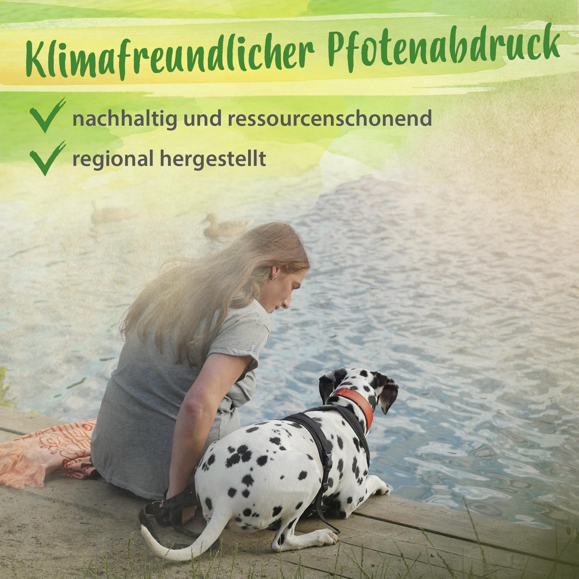 Glückspilz - natürliche Hunde Snacks zum Wohlfühlen mit Probiotika & Hanföl - 150g