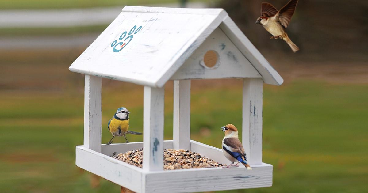 """Vogelhaus im """"Shabby Style"""" –die Bauanleitung"""