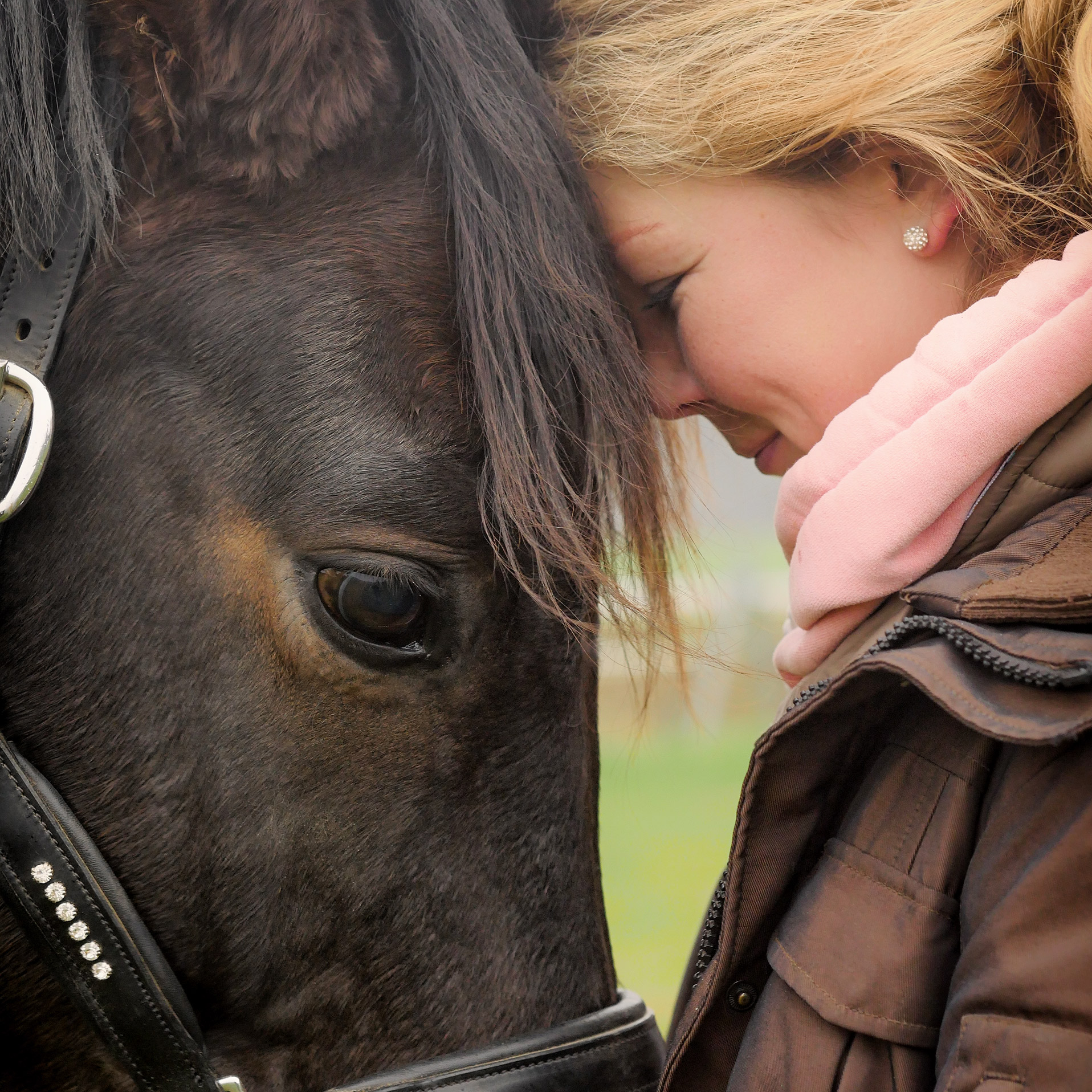 Biotin + Zink – Mineralfutter für Pferde – schöne Haut & glänzendes Fell - 750 g
