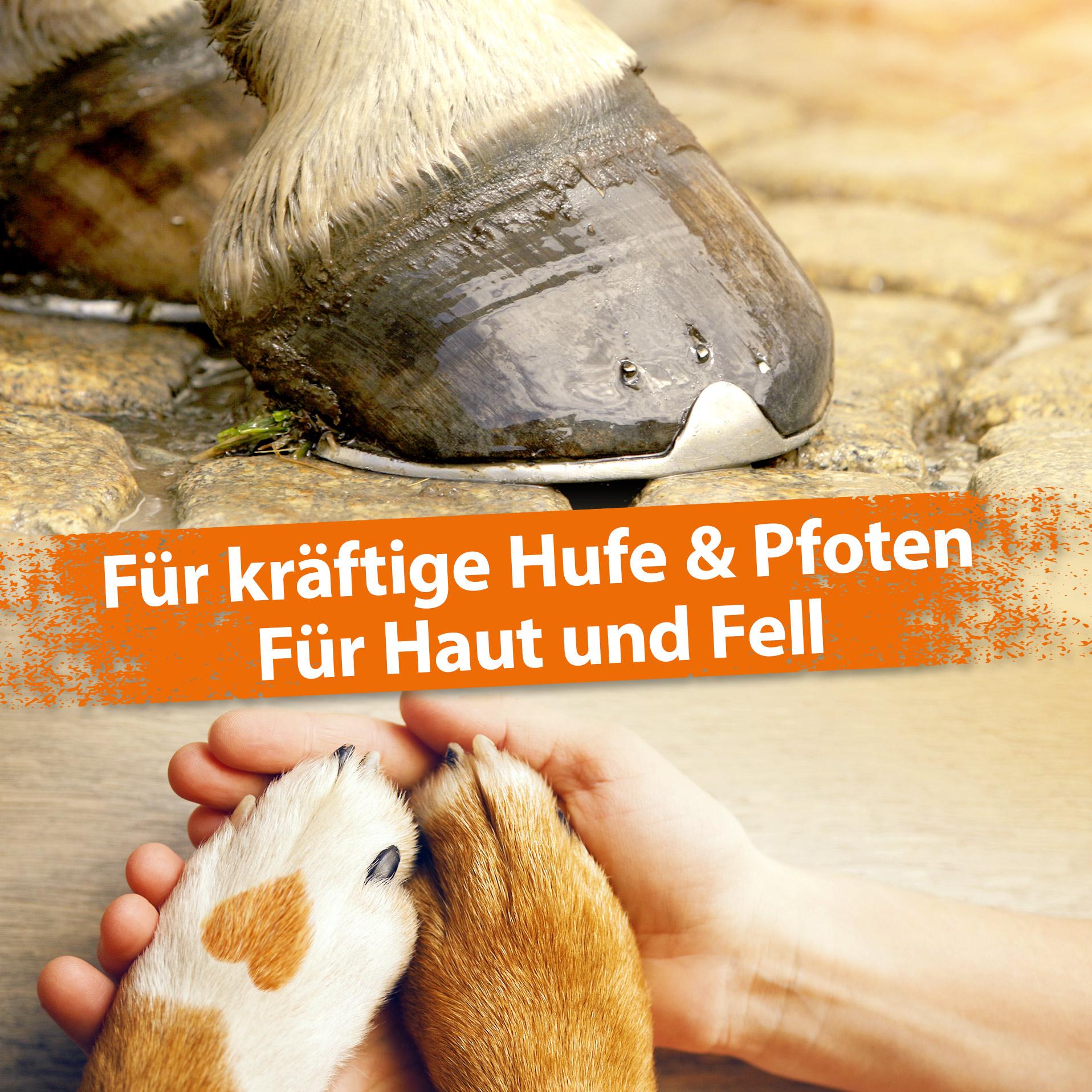 MineralForte - für Fell, Haut, Knochen, Zähne und Horn - 2 kg