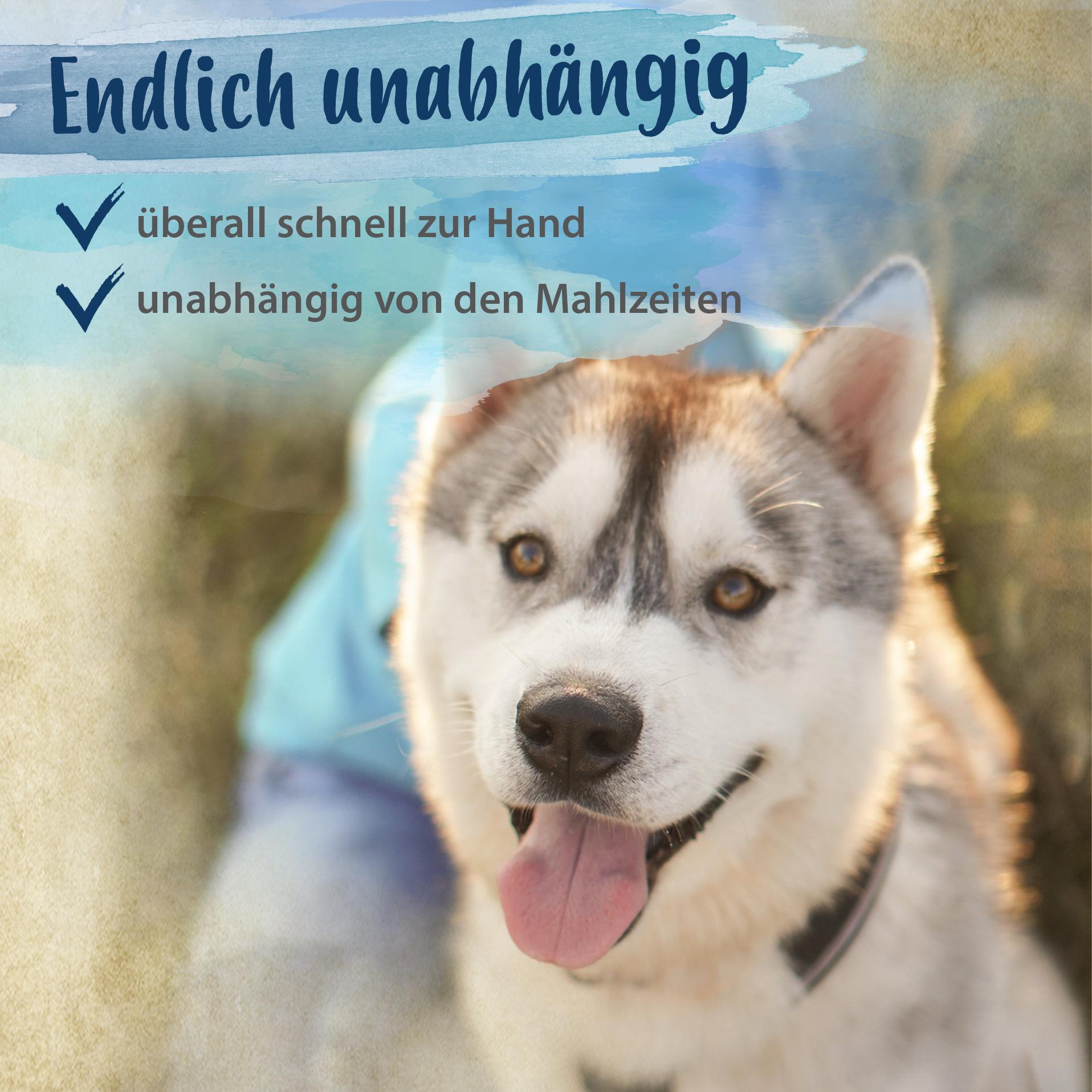 Sportsfreund - für starke Hunde Gelenke, Gelenkfunktion & Beweglichkeit - 200 g