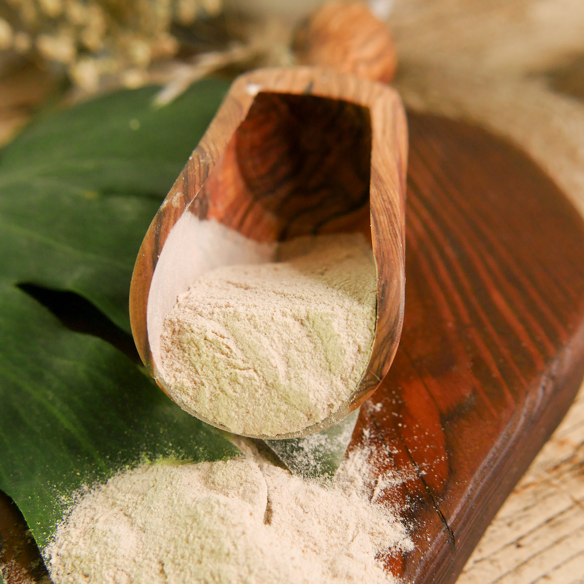 Flohsamenschalen-Pulver - zur Unterstützung der Verdauung & Darmflora - 700g