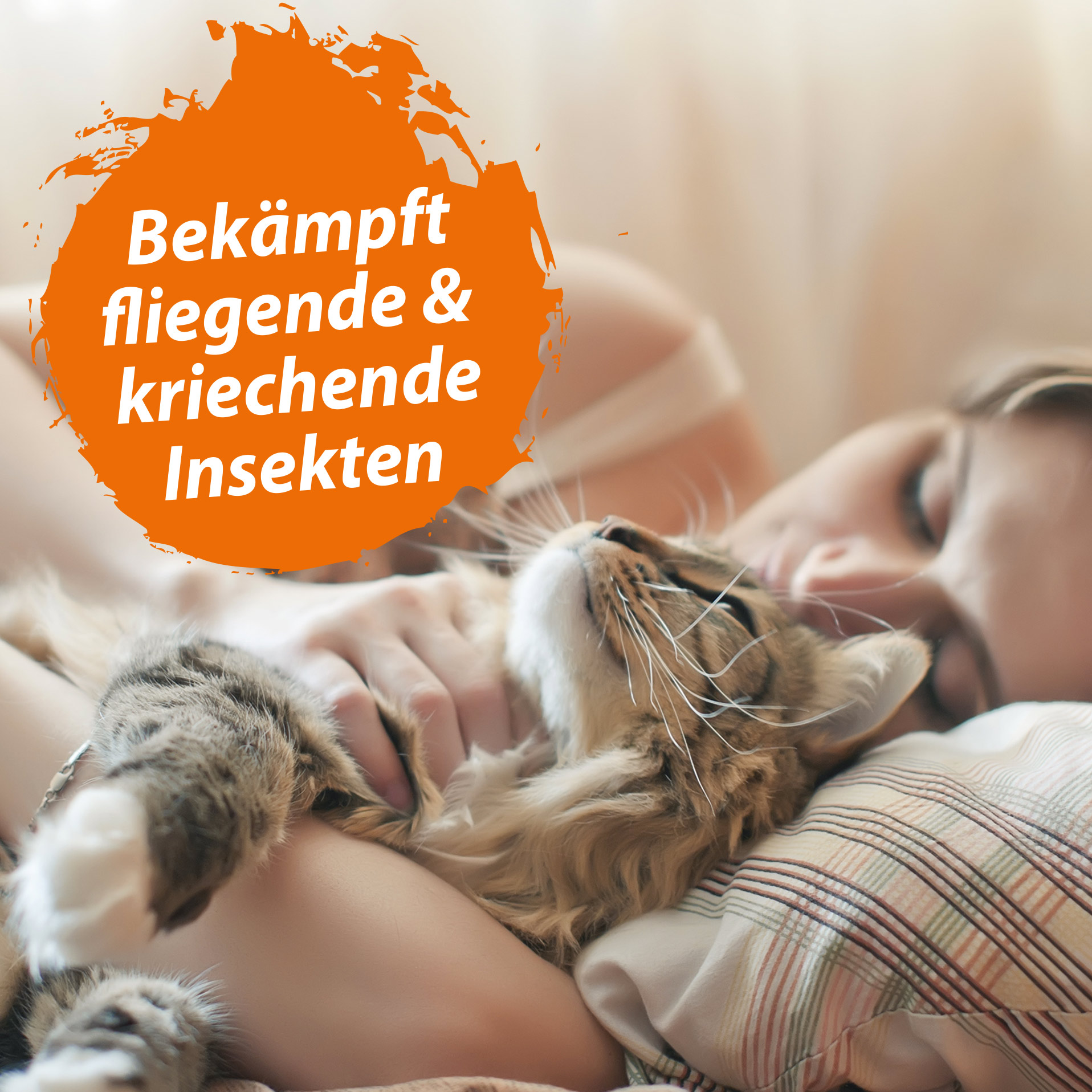 Fogger Vernebler gegen Flöhe, Zecken, Läuse, Milben & andere Insekten - 5x 300 ml
